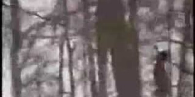 Bigfoot Footage – South River Ontario – 2009