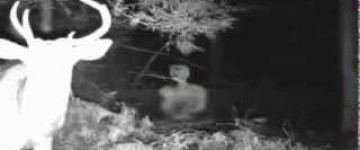 Ghost Footage filmed on Deer Cam