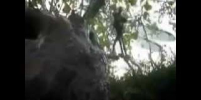 Faery Caught on tape in Mexico