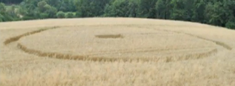 Two New Crop Circles found in Slovenia & Czech Republic – July 2013
