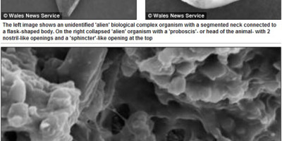 British scientists claim to have found alien life
