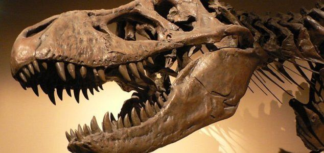 news-dino-meat-eater