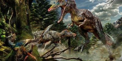 New Long-nosed dinosaur discovered