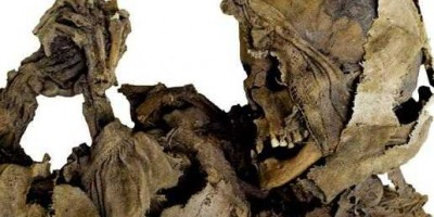 'Vampire' Skeleton Unearthed in Poland