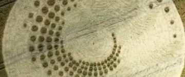 More new crop circles from Europe – July 2014
