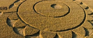 Two new crop circles from Europe – July 2014
