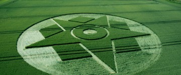 Top Crop Circles from 2014