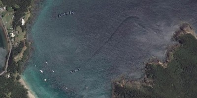 Mystery creature captured by Google Earth off the coast of New Zealand