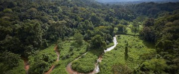 Ancient Lost City Discovered in Honduran Rain Forest