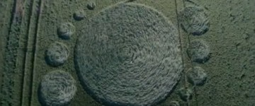 New Crop circle found in Netherlands – 15th June 2015