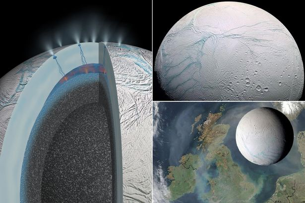 Enceladus is one of Saturn's moons - and NASA believes it could harbour life