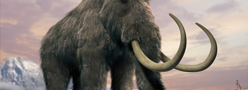 Russian scientists set up new laboratory to clone woolly mammoth