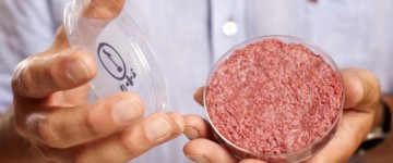 Scientists set to have Lab-grown burgers on the menu by 2020