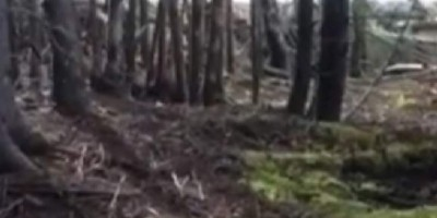 Man films strange phenomenon of the ground breathing in Canada