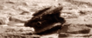 Strange Metallic Object Found on Mars