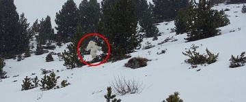 Yeti Sighting Filmed on Spanish Ski slopes