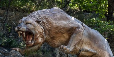 Scientists attempt to clone Ice Age LION