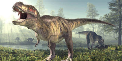 Scientists 'CLOSER' to bringing dinosaurs back