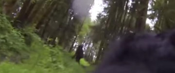 Bigfoot sighting filmed by Gopro in Oregon