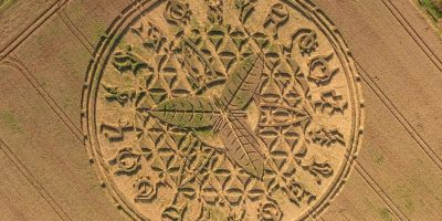 This crop circle appeared overnight in a wheat field in Wiltshire
