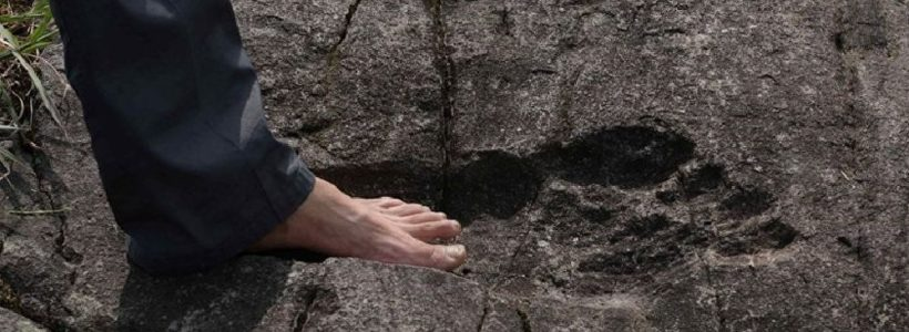 GIANT footprint has been discovered in China