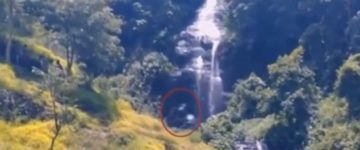 Creepy giant creature filmed roaming through Indonesian forest