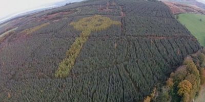 Mysterious Celtic cross discovered in Irish forest
