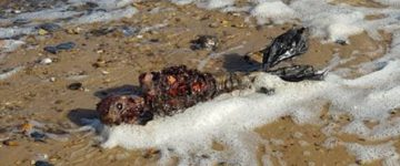 Man finds remains that looks like a 'dead mermaid' on deserted beach
