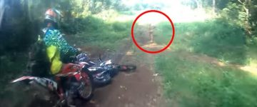 Strange creature filmed in Indonesia