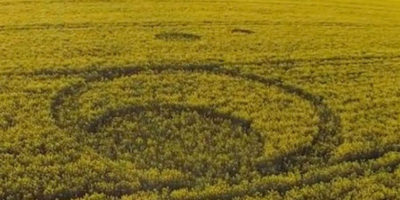 Crop Circle Discovered In Tarlton, Gloucestershire – April 2017