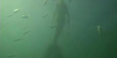 Mermaid Encounter Filmed At Great Barrier Reef