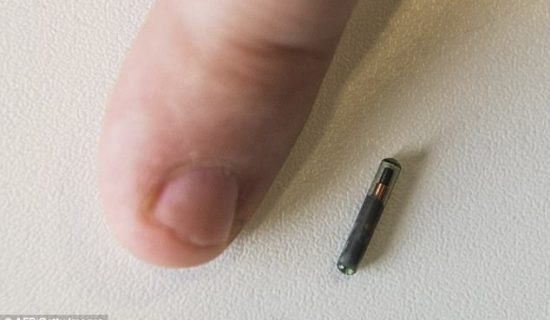 Wisconsin company announces it will be installing MICROCHIPS in their employees