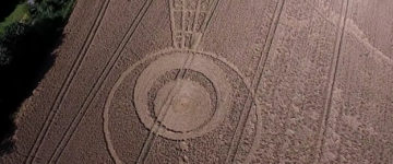 Crop Circle Discovered In Sutton Road, Rochford – August 17 2017