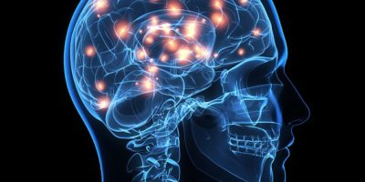 Scientists use electrical stimulation to inject information directly into the brains of monkeys