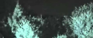 Strange Apparition appears near a forest