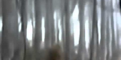 BigFoot sighting Filmed in the – Ukraine 2011