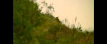 Bigfoot sighting filmed in California