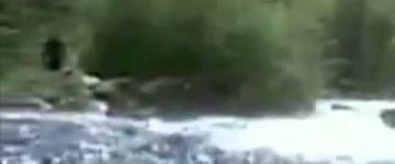 McKenzie river Bigfoot Sighting