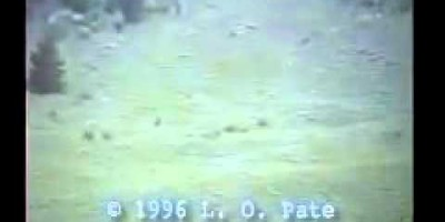 Bigfoot Sighting filmed on Memorial Day – 1996