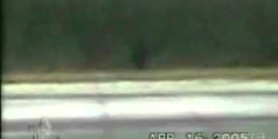 Bigfoot Footage Filmed in Manitoba