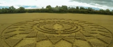 Latest crop circle reports from United Kingdom – August 2014