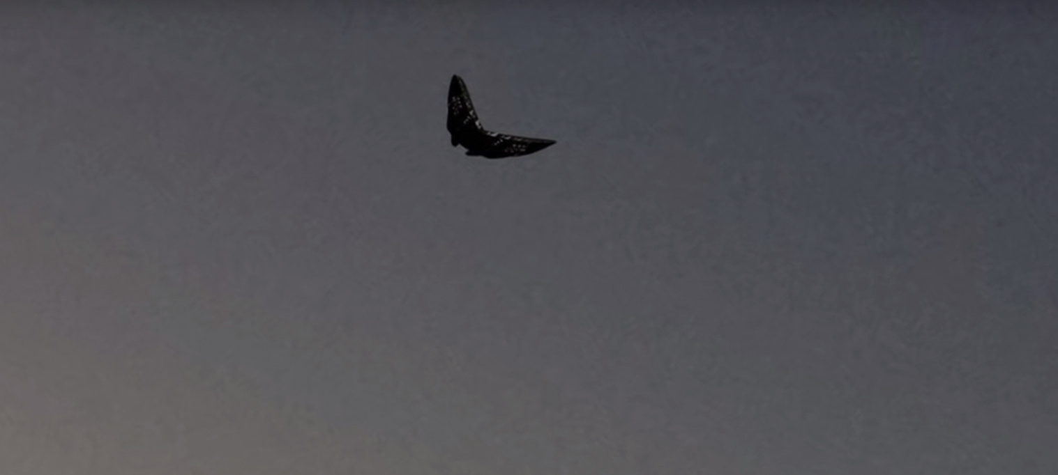 Butterfly shaped UFO filmed over Ohio – 24th October 2015