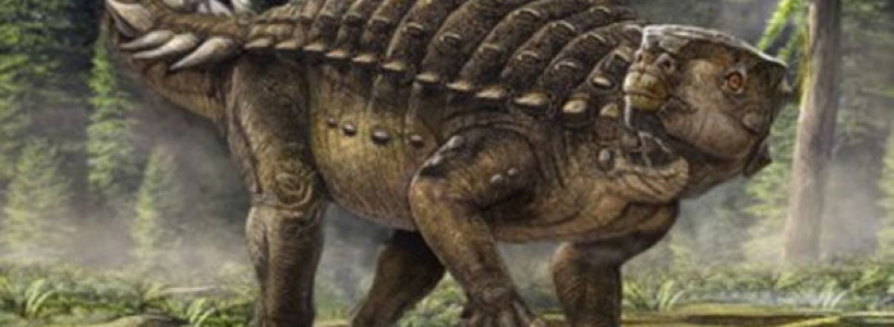 New heavily armoured dinosaur discovered