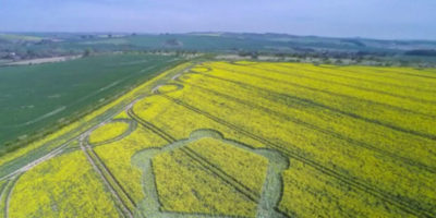 Crop Circle Discovered In Wiltshire, UK – May 6th 2016