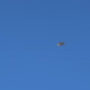 UFO sighting filmed over Seattle – June 21, 2016