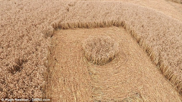 The formation is so big it can be seen from the nearby road and has been cut into a farmer's field of crops without him giving permission