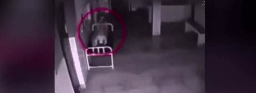 Ghost caught on tape leaving her body