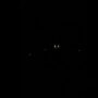 UFO Footage Recorded Over Columbus, North Carolina – April 3, 2018