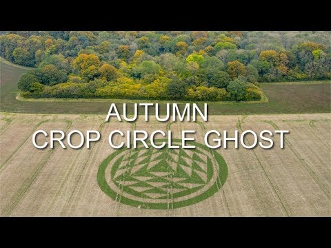 Green crop circle appears in Hampshire, England – 2019