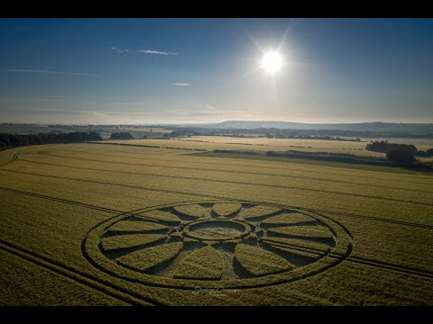 Another Crop Circle Has Appeared In Wiltshire, UK – June 14